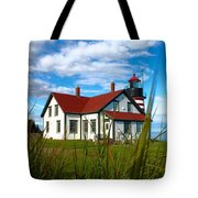 West Quoddy_5421 Tote Bag