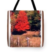 West Virginia Country Roads - Autumn Colorfest No. 1 - Germany Valley Pendleton County Wv Tote Bag