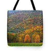 West Virginia High Tote Bag