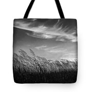 West Wind Bw Tote Bag