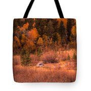 Western Barn At Sunset Iv Tote Bag