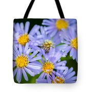 Western Daisies Asters Glacier National Park Tote Bag