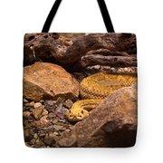 Western Diamondback Rattlesnake 2 Tote Bag