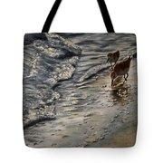 Western Sandpiper Tote Bag