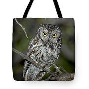 Western Screech Owl Tote Bag