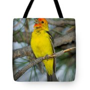 Western Tanager Singing Tote Bag