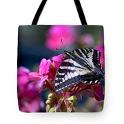 Western Tiger Swallowtail Butterfly On Geranium Tote Bag