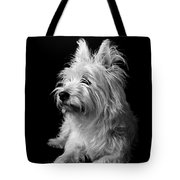 Westie Tote Bag by Catherine Reusch  Daley