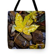 Wet Autumn Leaf On Stones Tote Bag