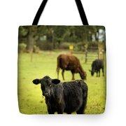 Wet Calf Tote Bag