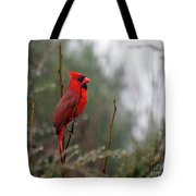 Wet Day Tote Bag