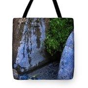 Wet Environments 1 Tote Bag