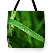 Wet Grasses Tote Bag
