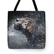 Wet Jaguar  Tote Bag