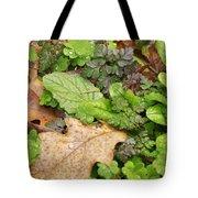 Wet Leaves Tote Bag
