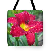 Wet Red Razzmatazz Daylily 1 Tote Bag