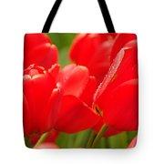 Wet Tulips Tote Bag