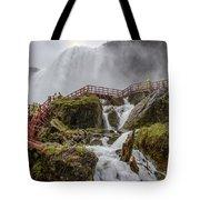Wet Walk Tote Bag