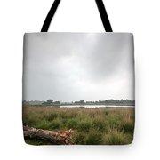 Wetland 1 Tote Bag