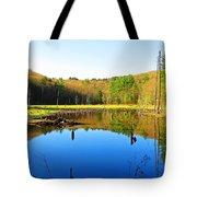 Wetland Morning Calm Tote Bag