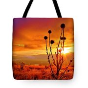 What A Morning Tote Bag