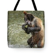 What A Show Little Bear Tote Bag