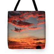 What Color Tote Bag