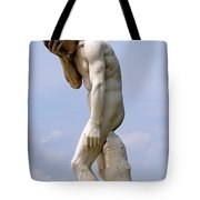What Did I Do ? Tote Bag