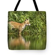 What Does The Fox See Tote Bag