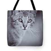What Eyes You Have Tote Bag