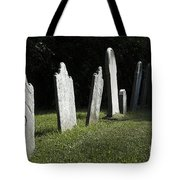 What History They Must Have Seen Tote Bag