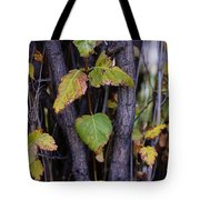 What Once Was Still Remains Tote Bag