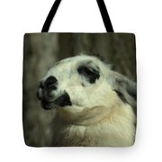 What So Funny Tote Bag
