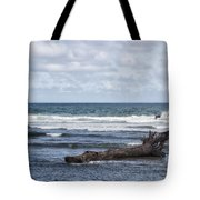 What The Sea Brought Back Tote Bag