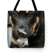 What Trash Can Tote Bag