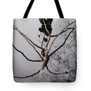 What You Make Of It ....closer Tote Bag