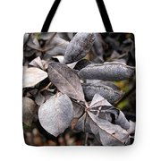 Still Life Within  Tote Bag