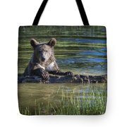 What's Mine Is Mine Tote Bag by Sandra Bronstein