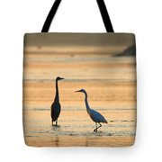What's Up 1940 Tote Bag