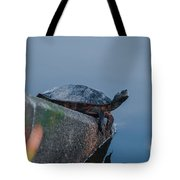 What's Up Tote Bag
