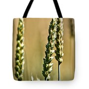 Wheat Stalks Tote Bag