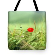 Wheatfield Poppy Tote Bag