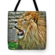 When He Speaks...they Listen...lazy Boy At The Buffalo Zoo Tote Bag