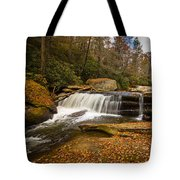 When Leaves Have Fallen Tote Bag