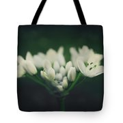 When Love Was Young And New Tote Bag