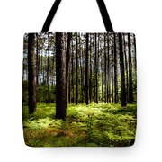 When The Forest Beckons Tote Bag