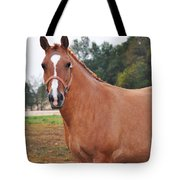 When You Look Me In The Eyes Tote Bag
