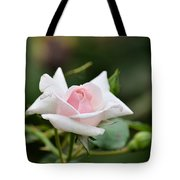 When You Were Young Tote Bag