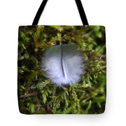 Where A Feather Finds Itself Tote Bag