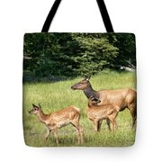 Where Are We Going Tote Bag